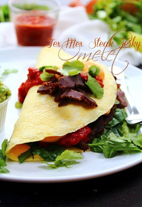 Tex Mex Omelet Queso & Salsa (4) title